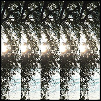 Cover zu Pontiak (2) - Dialectic Of Ignorance (LP, Album) Schallplatten Ankauf