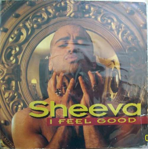 Bild Sheeva - I Feel Good (The Remixes) (12) Schallplatten Ankauf