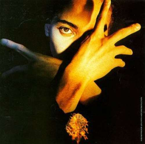 Cover Terence Trent D'Arby - Terence Trent D'Arby's Neither Fish Nor Flesh (A Soundtrack Of Love, Faith, Hope & Destruction) (LP, Album) Schallplatten Ankauf