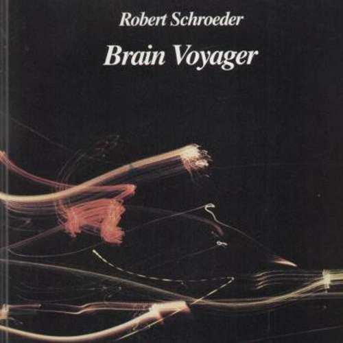 Bild Robert Schroeder* - Brain Voyager (LP, Album) Schallplatten Ankauf
