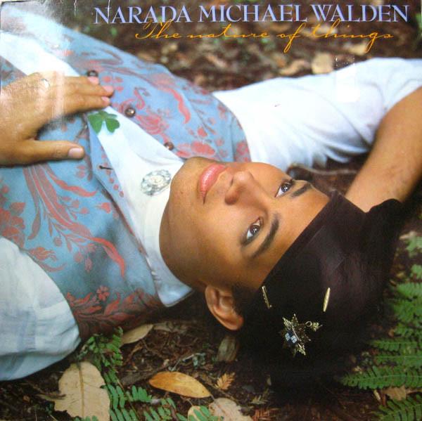 Bild Narada Michael Walden - The Nature Of Things (LP, Album) Schallplatten Ankauf