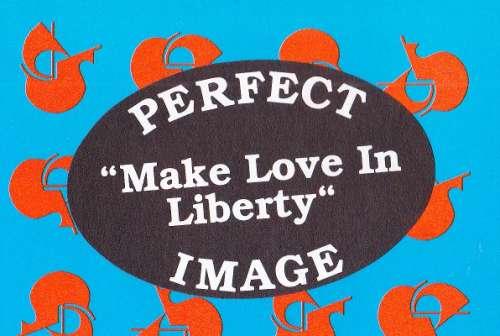 Bild Perfect Image - Make Love In Liberty (12, Maxi, Promo) Schallplatten Ankauf