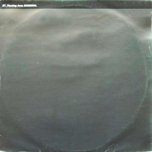 Cover BT - Flaming June (2x12, Promo) Schallplatten Ankauf