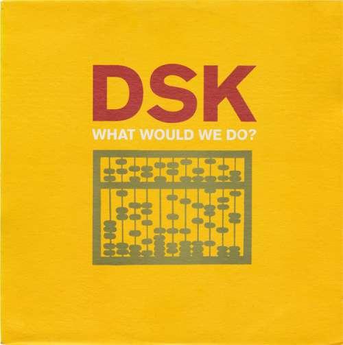 Bild DSK - What Would We Do? (12) Schallplatten Ankauf