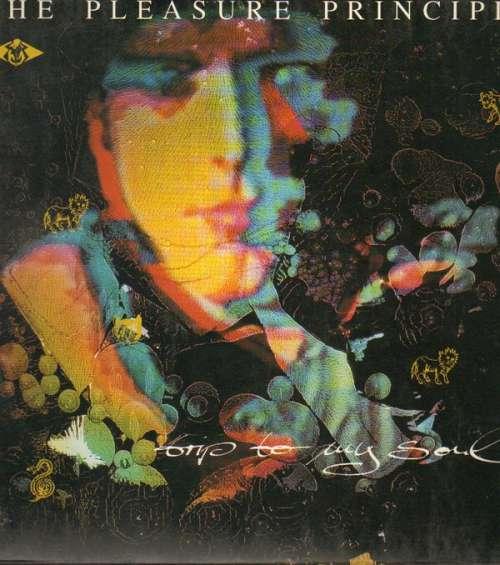 Bild The Pleasure Principle - Trip To My Soul (LP) Schallplatten Ankauf