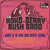 Cover zu Koko-Berry Bush Band - She's A Na Na Nice Girl / I've Got Something To Tell (7, Single) Schallplatten Ankauf